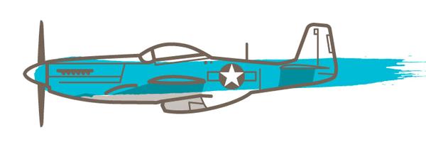 p51 vector
